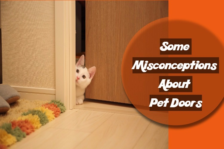 Some Misconceptions About Pet Doors